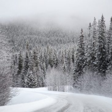 Winter Hints and Unsettled Weather